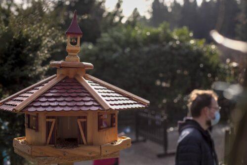 Vogelhaus auf der Terrasse